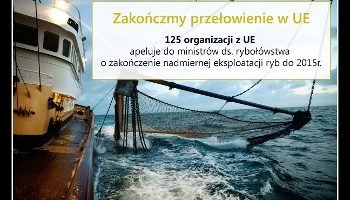 Ponad 120 organizacji wzywa ministrów UE do tego by zakończyli przełowienie!