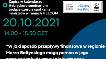 W jaki sposób przepływy finansowe w regionie Morza Bałtyckiego mogą pomóc w jego przywróceniu do stanu pierwotnego?